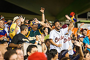SAN JUAN, PUERTO RICO FEBRUARY 2: Fans for Venezuela cheer  during the game against Puerto Rico on February 2, 2015 in San Juan, Puerto Rico at Hiram Bithorn Stadium(Photo by Jean Fruth)