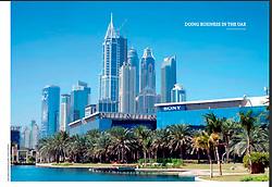 United Arab Emirates: 2015 Year of Innovation Brochure