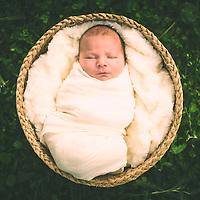 Baby Forrest