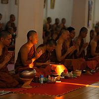 Monks at morning prayer, Wat Dara Pirom, Chiang Mai, Thailand
