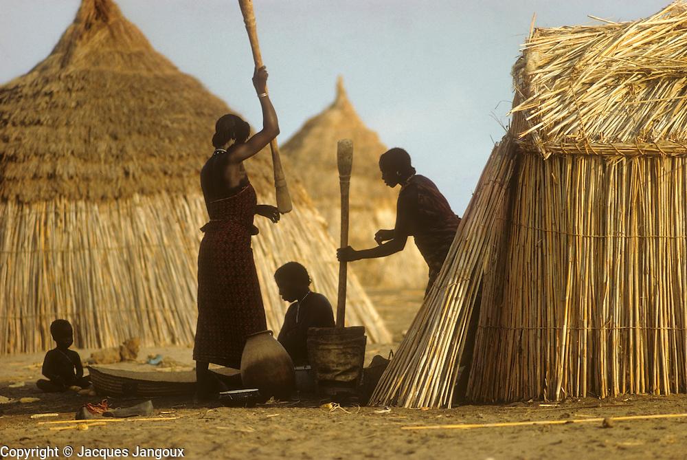 Africa, Sahel region, Chad, Islands of Lake Chad: Buduma (Yedina) women pounding millet (pearl millet, Pennisetum glaucum).