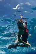 under water,snorkling,ocean,people,water,photography,photo,diving,Hawaii,