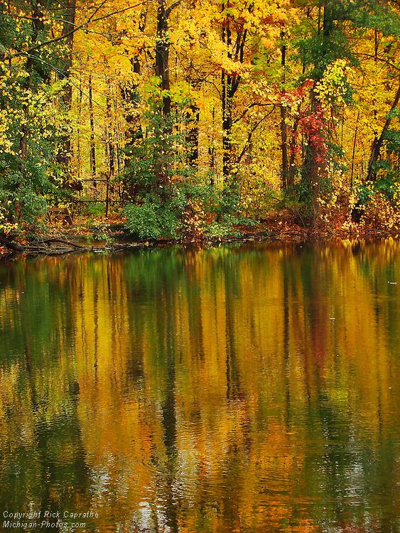 Autumn Reflections on Lake