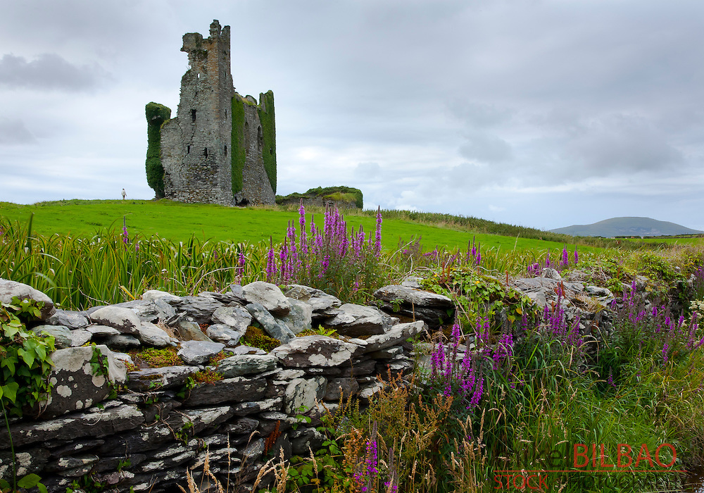 Ballycarbery Castle. Caherciveen. Ring of  Kerry. County Kerry, Ireland.