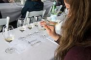Oregon Chardonnay Symposium at Stoller vineyards, Dundee, Willamette Valley, Oregon