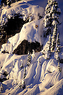 A snowboarder plunges down a steep face in the Coast Mountains of British Columbia.