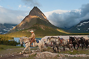 A cowgirl leads a string of horses at the Many Glacier Hotel in Glacier National Park, United States