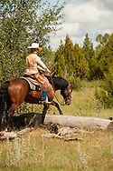Trail Riding, Quarter Horse, Montana