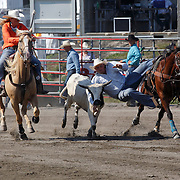 Rodeo 2015 Valleyfield, Quebec