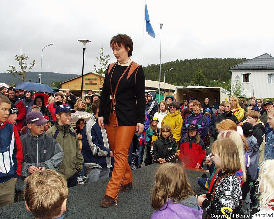 Eva Wilks.dig Det sørsamiske området strekker seg fra Saltfjellet i nord til Elgå i Hedmark i sør. Omfatter noen få tusen på norsk og svensk sida av grensa. The sourth sami people consists of a couple of tousand people in Mid-Norway and Mid-Sweden.