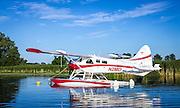 D.J. Dondelinger, Brainerd, MN.  1955 de Havilland DHC2 Beaver, Gold Lindy at AirVenture 2015.