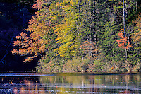 Colorful fall trees reflected in Lake Chocoura NH.