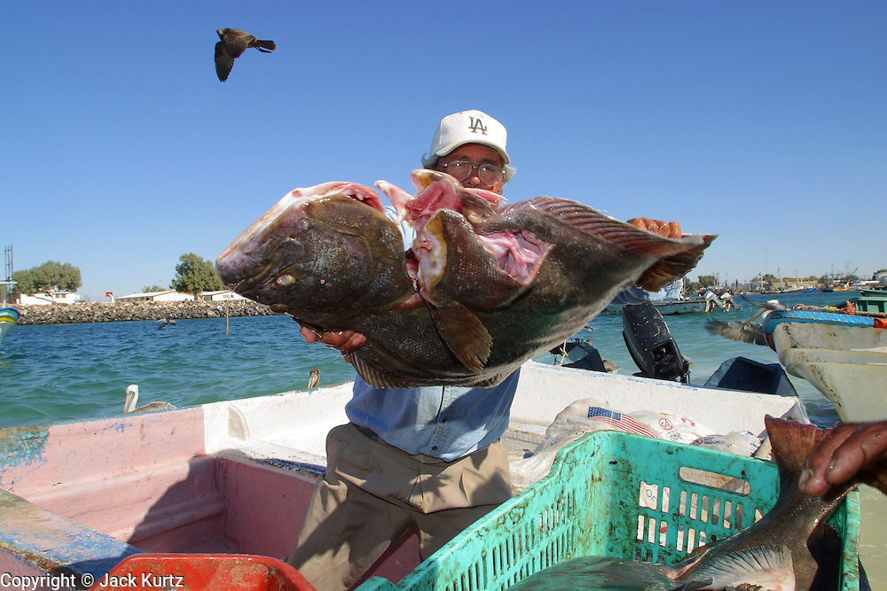 Mexican fishermen jack kurtz photojournalist travel for Puerto penasco fishing