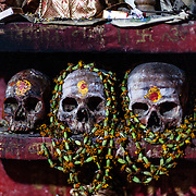 Skulls in the tiny temple of Shri Baba Chamunda Ram, an Aghori, Tantra and Yantra yogi.