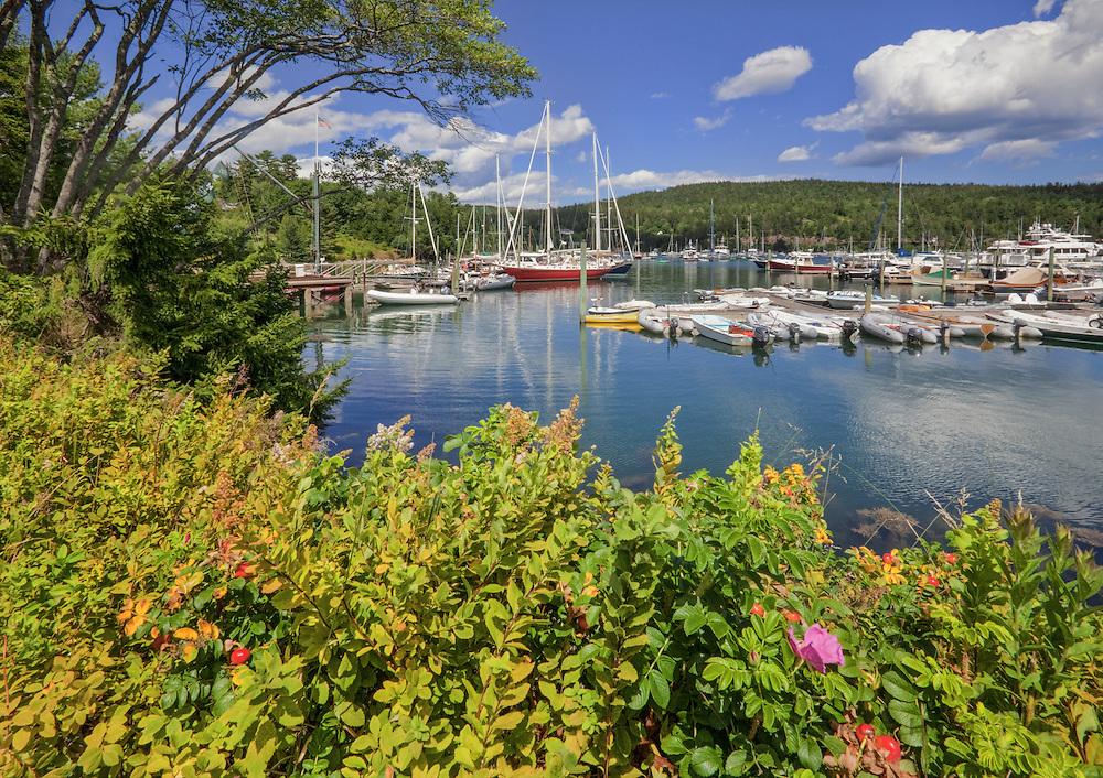 0902-1015  The inner harbor at Northeast Harbor, Mt. Desert Island, Maine.  Acadia National Park.