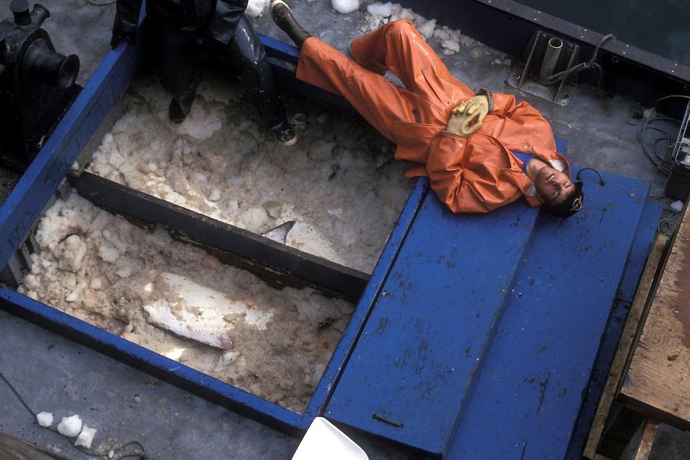 USA, Alaska, Kodiak Island, (MR) Fisherman Al Dranberg rests while unloading fish from halibut boat