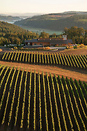 Aerial view over Penner-Ash Winery, Willamette Valley, Oregon