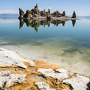 An intriguing island of tufa towers reflect in alkaline waters at South Tufa Area, in Mono Lake Tufa State Natural Reserve, Lee Vining, California, USA. Orange algae forms colorful mats. The Reserve protects wetlands that support millions of birds, and preserves Mono Lake's distinctive tufa towers -- calcium-carbonate spires and knobs formed by interaction of freshwater springs and alkaline lake water. Mono Lake has no outlet and is one of the oldest lakes in North America. Over the past million years, salts and minerals have washed into the lake from Eastern Sierra streams and evaporation has made the water 2.5 times saltier than the ocean. This desert lake has an unusually productive ecosystem based on brine shrimp, and provides critical nesting habitat for two million annual migratory birds that feed on the shrimp and blackflies. Since 1941, diversion of lake water tributary streams by the city of Los Angeles lowered the lake level, which imperiled the migratory birds. In response, the Mono Lake Committee won a legal battle that forced Los Angeles to partially restore the lake level.