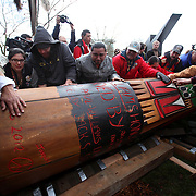 People roll over a totem pole estimated to weigh nearly 5,000 pounds at the Seattle Center on Sunday February 26, 2012. The 33-foot tall totem pole was erected Sunday in honor of slain Native American woodcarver John T. Williams. Williams was shot and killed by a Seattle Police officer in 2010. The shooting was later ruled unjustified.  (Joshua Trujillo, seattlepi.com)