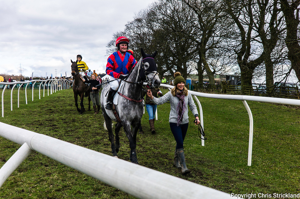 Corbridge, Northumberland, England, UK. 28th February 2016. Jockey Kelly Bryson and Viocometti make their way to the start at the Tynedale Hunt annual Point to Point horse racing fixture.