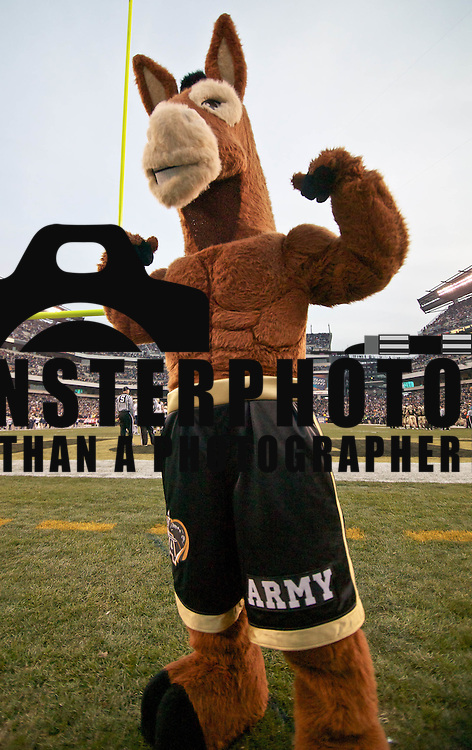 The Army mule during the 111th Army Navy Game. Navy set the tone early in the game as Navy defeats Army 31-17 in front of 69,223 at  Lincoln Financial Field in Philadelphia Pennsylvania