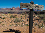 The view from Plateau Point in Grand Canyon National Park.