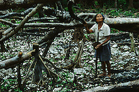 A woman attempts to plant rice in the rocky soil of a burned down forest.  Slash and burn agriculture.