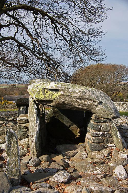 Europe, Great Britain, Wales. Dyffryn Ardudwy Cromlech.