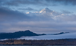 Four Winds Mountain near Haines, Alaska and near the border with Alaska and British Columbia, Canada rises out of low-lying clouds along the Chilkat River in the Alaska Chilkat Bald Eagle Preserve.