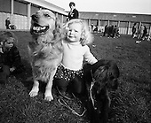 1972 - RDS Dog Show (St Patrick's Day)