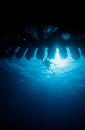 A SCUBA diver swims under the super structure of a oil rig in the Channel Islands National Park, Santa Barbara, California, USA.