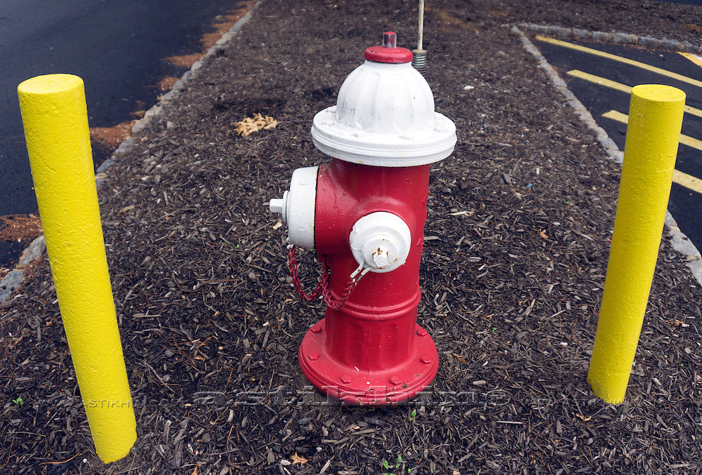 Hydrant red and white.