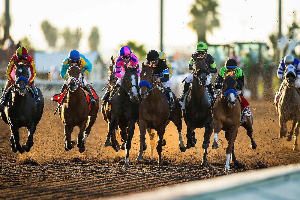 December 12, 2015:  Street Fancy with Mike Smith up wins the Starlet Stakes at Los Alamitos Race Track in Cypress California. Evers/ESW/CSM