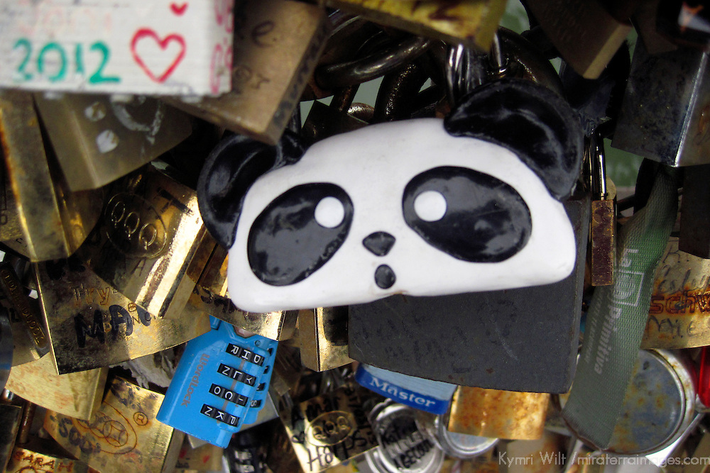 Europe, France, Paris. Panda Love-lock on the Pont de l'Archevêché over the Seine.