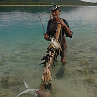 Old SpearfishermanTongan spearfisherman, Hakautu'utu'u island (or islet), Niuatoputapu Island lagoon, Tonga. Niuatoputapu is one of two inhabited islands in Tonga's remote Niua Group, 300 kilometres north of the more developed Vavau group.  Niuatoputapu has a population of around 1000 and is rarely visited by tourists.  Fishing has been a way of life for Niuatoputapu islanders for at least a thousand years.  Netting and spearing are the prime methods used, but spear fishing is often practised in the shallow lagoon bordering the island.  Whilst snorkelling around the edge of Hakautu'utu'u, this old fisherman suddenly appeared and appeared pleased to show me his catch.  The equipment he uses appears much more primitive than in the more developed parts of Tonga. His speargun comprises a small catapult , with a few simple steel rods for spears ( a system known as sling spear).  His mask appears to date from at least the nineteen eighties, with the metal clamp securing the glass plate fastened by nylon twine.  The two fins he wears are each different colours and design.  Despite the antiquity and simplicity of his equipment, he has made a good catch, including a reef octopus, a porcupine pufferfish and several surgeonfish.  Breathe-hold or free diving for fish (known as 'Uku in Tongan) and has a long history in the South Pacific.