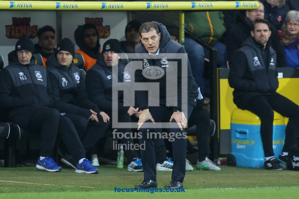 West Ham Manager Slaven Bilic during the Barclays Premier League match at Carrow Road, Norwich<br /> Picture by Paul Chesterton/Focus Images Ltd +44 7904 640267<br /> 13/02/2016