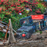Fishing, lobster traps in Ireland