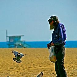 Hippy feeding pidgeons, Venice Beach, Los Angeles, California