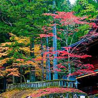 Autumn day in the Japanese resort Nikko