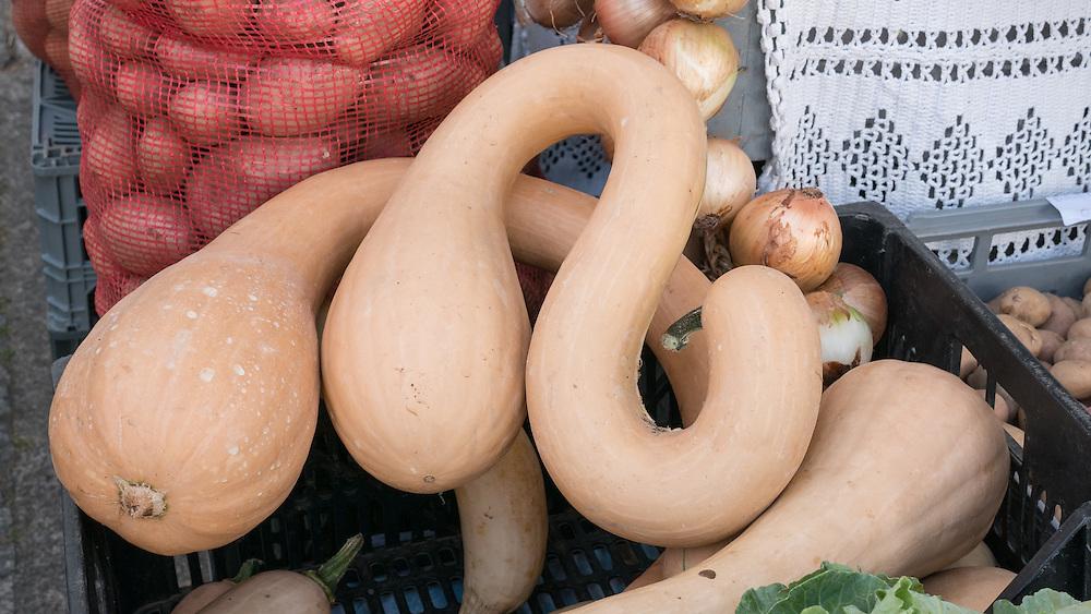 REAL organic food at Arouca's Sunday market.