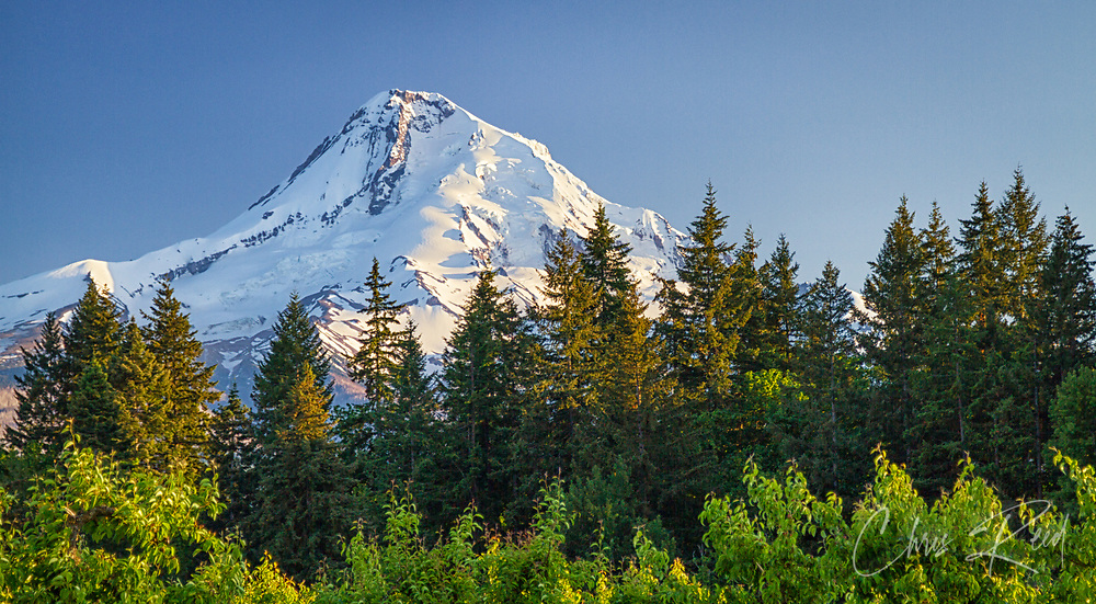 USA, Oregon, Hood River County. The sun sets on Mount Hood.