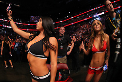Montreal, Quebec, CAN - November 17, 2012: Octagon girls Brittany Palmer (right) and Arianny Celeste (left) before the main event bout at UFC 154 at the Bell Centre in Montreal, Quebec, Canada.