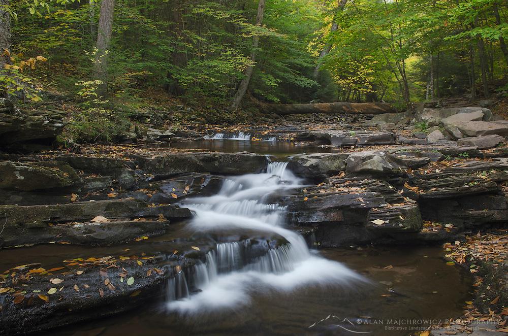 Cascades in Glen Leigh, Ricketts Glen Pennsylvania