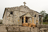 A dog sleeps in front of a church located in a mexican archaeological zone called Yohualichan. This archaeological zone, relatively new to the public is located close to Cuetzalan; there are similarities in design of structures to the site at El Tajin, Veracruz. Cuetzalan is a small town set high in the hills in the north of the Mexican state of Puebla. This town took its name from the quetzal, the colorful bird whose tail feathers the Mexicas used in religious ceremonies. Feb. 18, 2008. (ivan gonzalez).