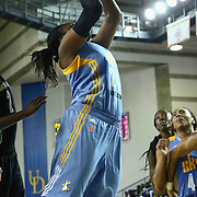 Chicago Sky Center SHANECE MCKINNEY (24) puts up a shot in the fourth period of a WNBA preseason basketball game between the Chicago Sky and the New York Liberty Sunday, May. 01, 2016 at The Bob Carpenter Sports Convocation Center in Newark, DEL