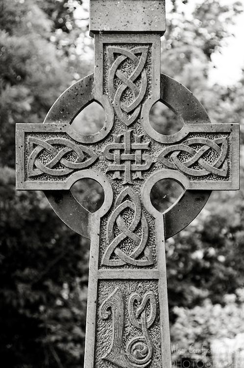 Quin Abbey, in County Clare, Ireland.