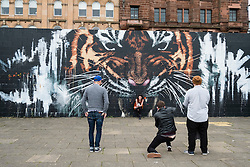 Street scene with tiger mural , street art on walkway beside River Clyde in central Glasgow , Scotland, United Kingdom