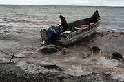 Walrus hunt in Akkani. Chukotka, Russia, 2015