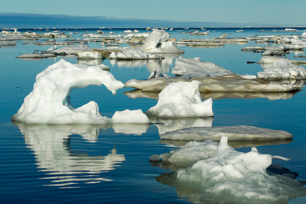 Canada, Manitoba, Churchill, Melting icebergs floating in calm waters on Hudson Bay on sunny summer morning