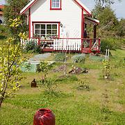 Gardening - Rykkja kolonihage